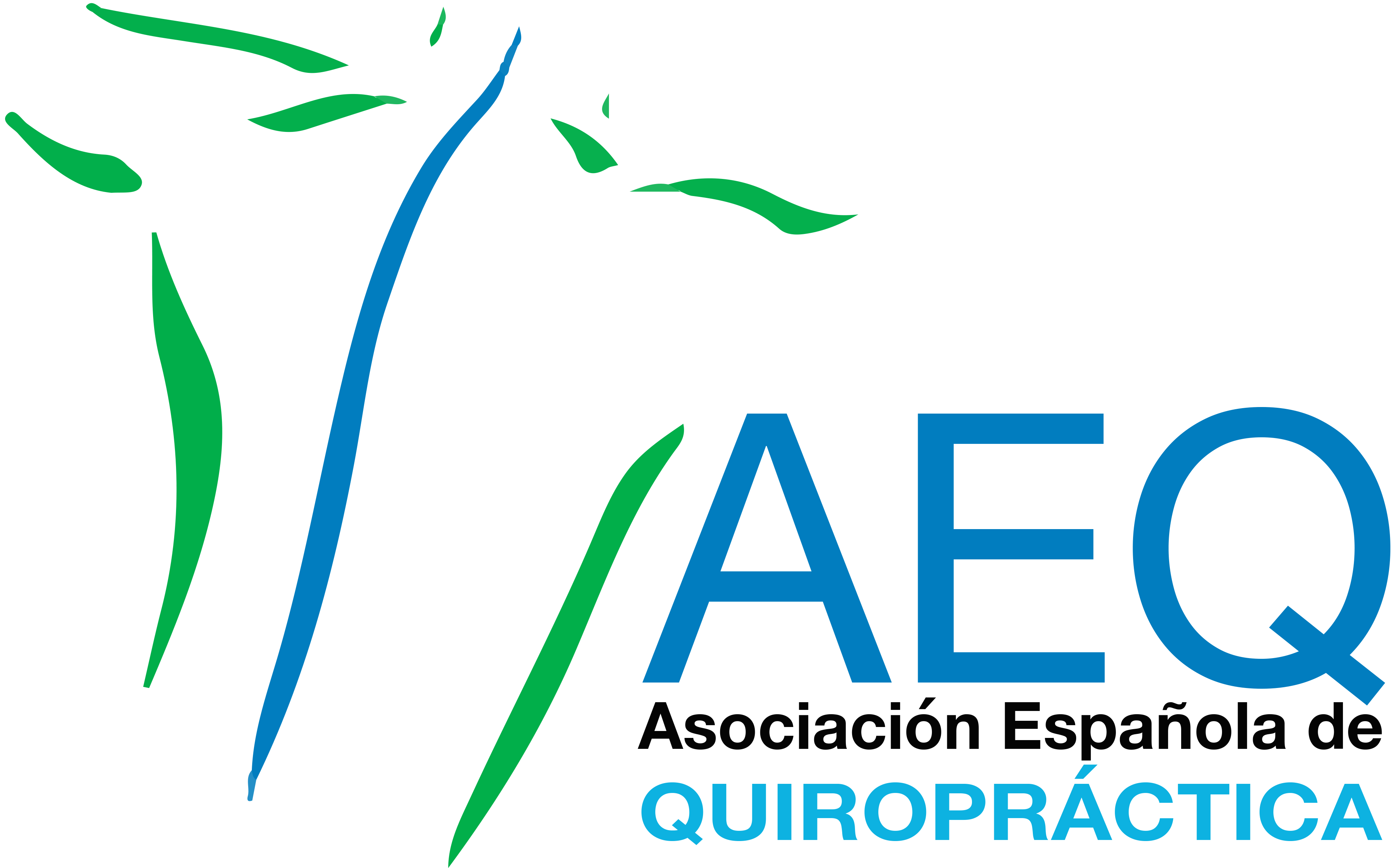 AEQ-LOGO-TRANSPARENT-LARGE